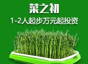 芽苗菜种zhi 小投资