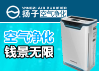 yang子空气净化器