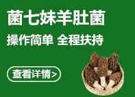 zhongzhi好项目 看zhe里
