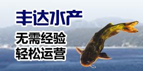 shui产养殖 创业fu持